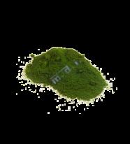Pea green-Xanh Đậu